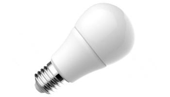 A19 Bulbs
