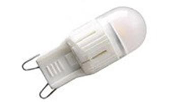 G9 Bulbs