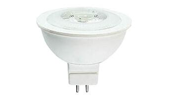 12V MR Bulbs